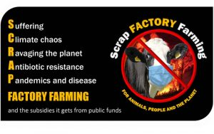 Women Lead Legal Challenge to Scrap Factory Farming in the UK